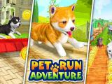 Play Pet run adventure puppy run now